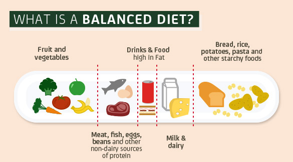 what is a blanced diet