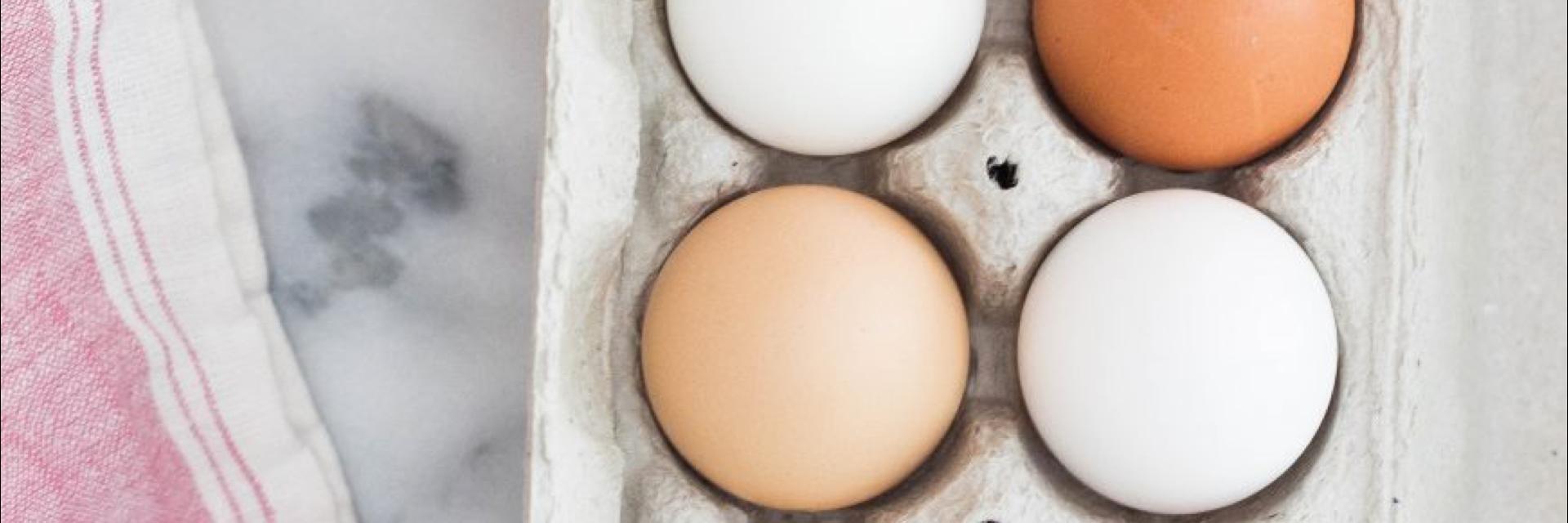 ¿Hay alimentos prohibidos para el colesterol elevado?